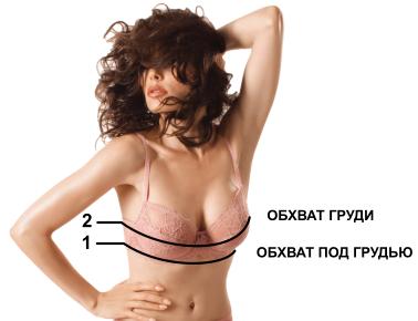 sizes_bra